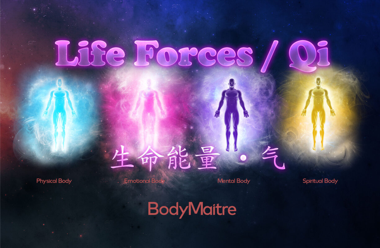 Life Forces